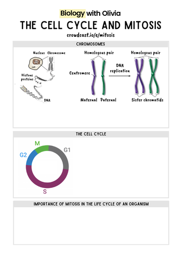 The cell cycle and mitosis | A Level Biology notes template