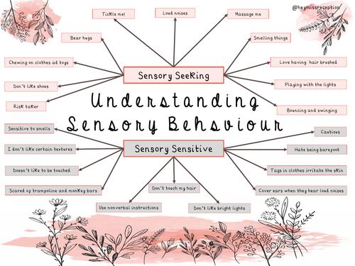 Sensory Seeking Behaviour