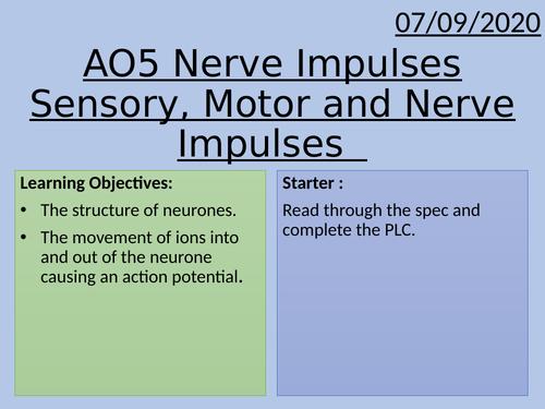 Applied Science Unit 4 AO5 - Understanding Nerve Impulses