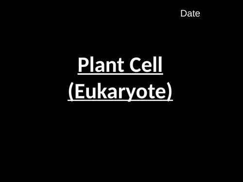 Plant Cell (B1.2)