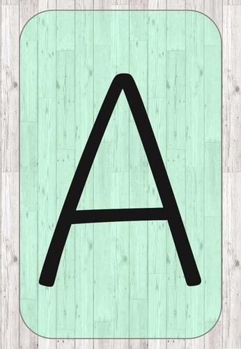 Display Lettering print/precursive Capital/Lower