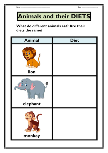 Animals and their Diets