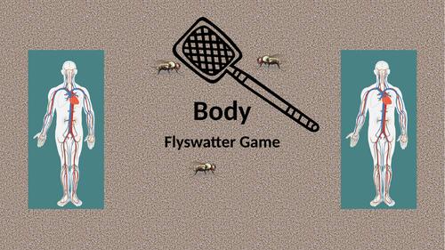 Body Flyswatter