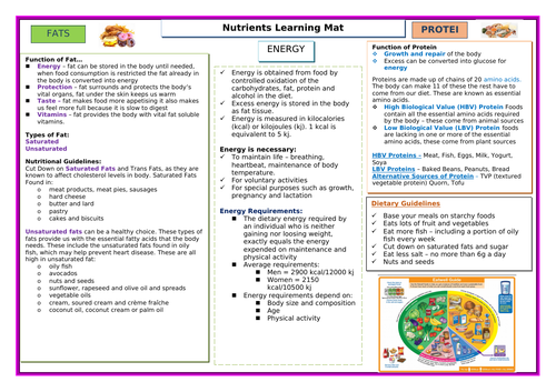 Nutrients Learning Mat