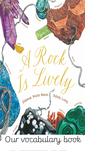 A Rock is Lively vocabulary book