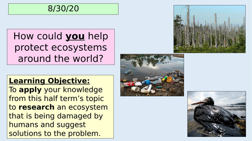 Ecosystems IT research lesson - Ecosystems topic L10 (KS3 Geography)