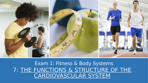 GCSE PE Edexcel 7: Functions & structure of the cardiovascular system