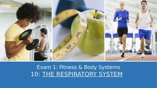 GCSE PE Edexcel 10: The respiratory system