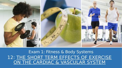 GCSE PE Edexcel 12: Short term effect of exercise on the cardiac and vascular system