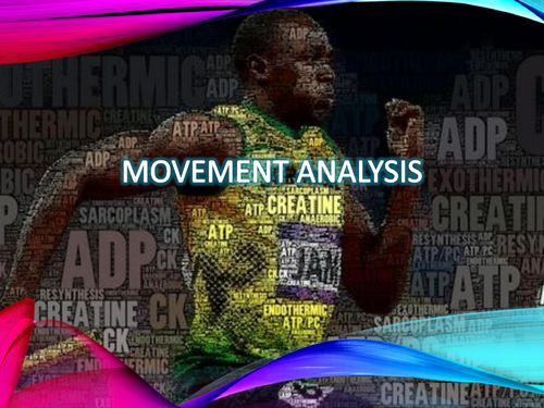 AQA A level PE - Movement Analysis & Muscle Contraction (Anatomy & Physiology)