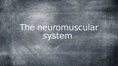 AQA A Level PE - Neuromuscular System (Anatomy & Physiology)