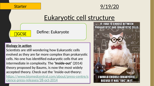 AQA A-Level New specification-Eukaryotic cell structure-Section 2-Cells 3.4 (AQA spec 3.2.1.1)