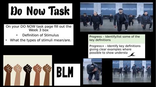 Diversity Black Lives Matter lessons 3 and 4