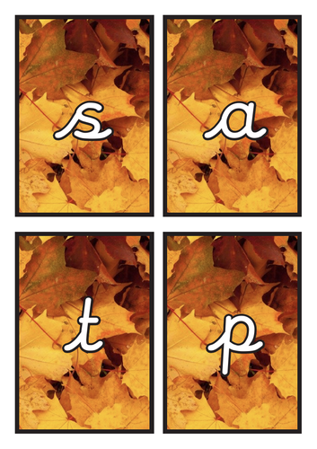 Cursive Phase 2 Phonics Flashcards on Autumn Background