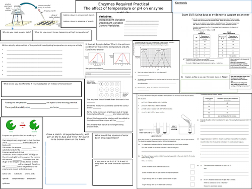 Enzyme Activity Temperature pH Revision Sheet GCSE REQUIRED PRACTICAL AQA