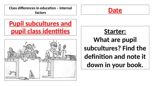 AQA A Level - Sociology - Pupil Subcultures