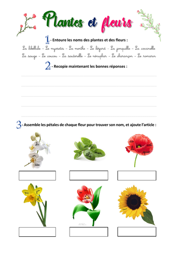 """(French) """"Plantes et fleurs"""" - Write and identify plants + flowers"""