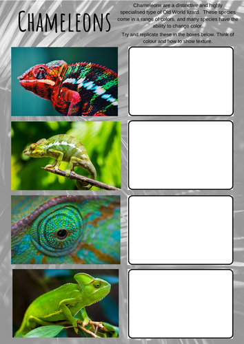 Reptiles and Amphibians Art worksheets, analysis, cover home learning