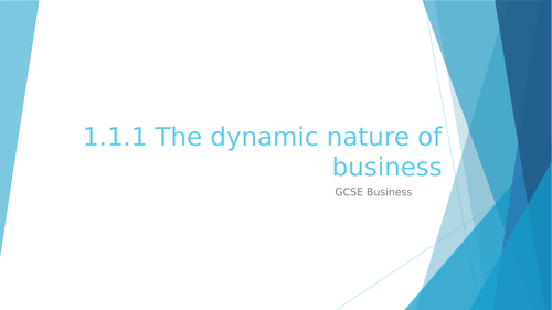 1.1.1 The dynamic nature of business