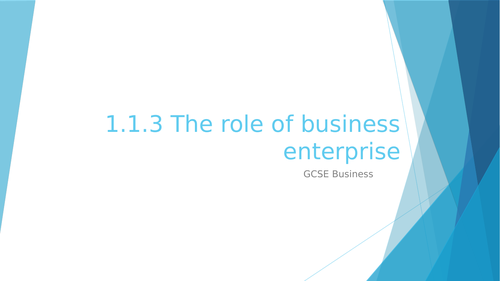 1.1.3 The role of business enterprise
