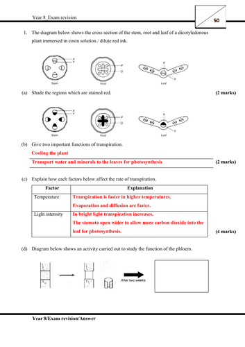 Answer script for Revision 1 & 2