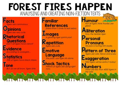 Forest Fires Happen