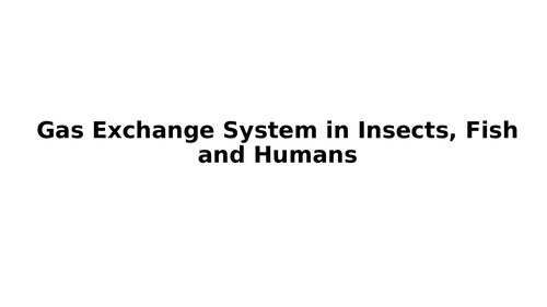 A level Biology: Gas exchange system in Insects, Fish and Humans