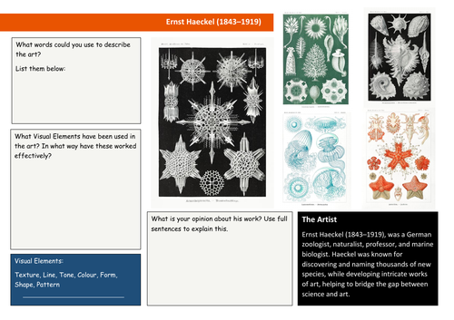 Ernst Haeckel Analysis sheet
