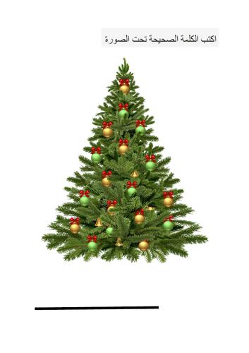 ESOL Arabic Christmas Resources