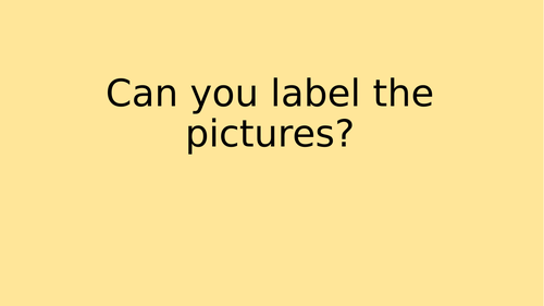 Can you label the picture? Powerpoint