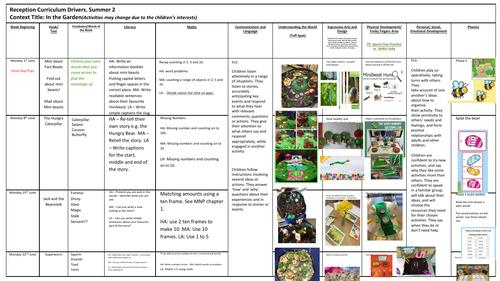 Medium Term Plan - In the Garden/Mini-beasts