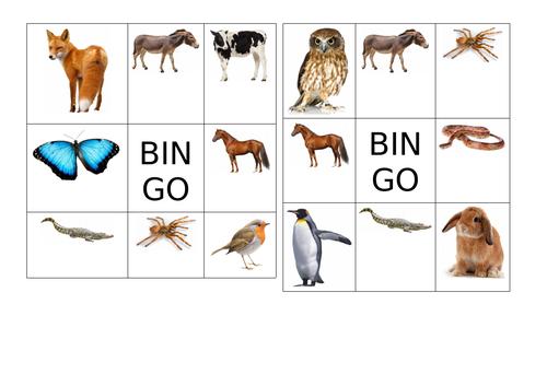 bingo animals