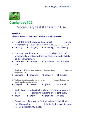 Cambridge English FCE Use of English vocabulary test