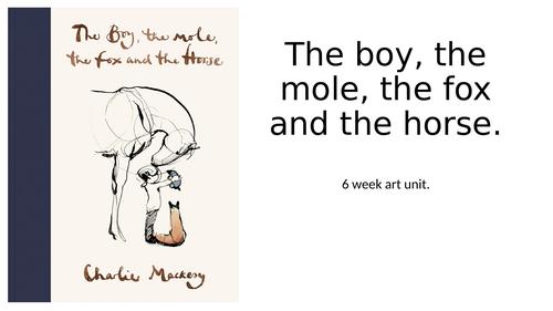 The boy, the mole, the fox and the horse by Charlie Mackery whole school art unit KS2