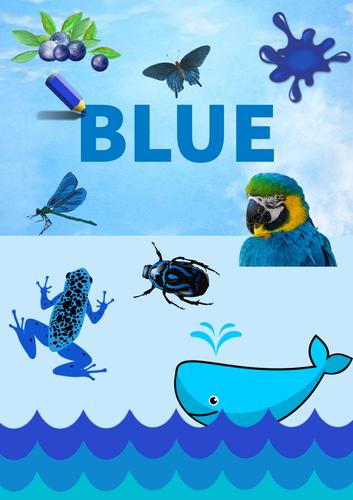 Colour Poster: Blue