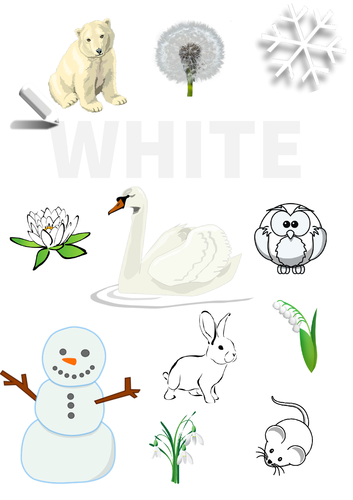 Colour Poster: White
