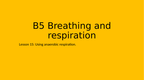 Anaerobic respiration investigation - KS3 15/16
