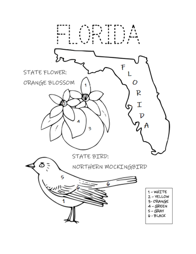 FLORIDA STATE BIRD AND FLOWER COLORING PAGE