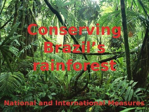 Conserving Brazil's Rainforest