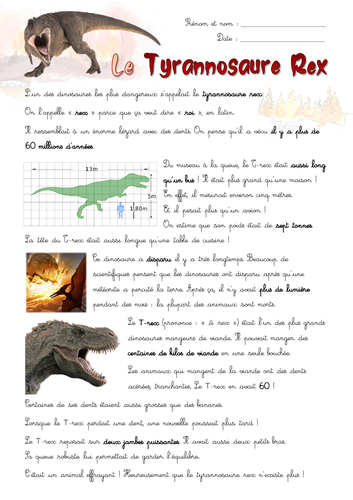 [French, dinosaurs] The Tyrannosaurus Rex - Written comprehension