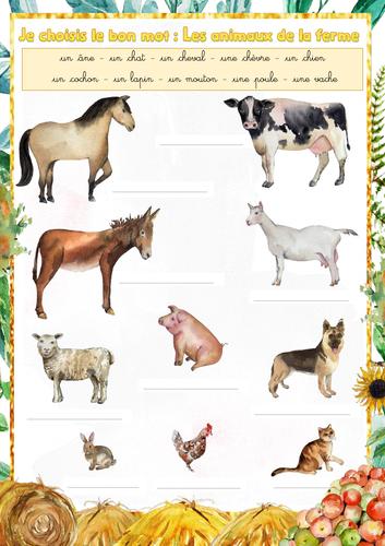 Handwriting (French): Farm animals (les animaux de la ferme)