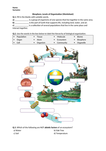 Biosphere, Levels of Organization - Worksheet | Distance Learning