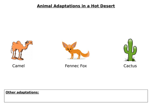Hot Deserts Adaptations: Worksheets and Information