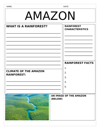 Tropical Rainforest (Amazon) Newspaper: Characteristics