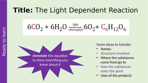 Light-dependent Reaction Photosynthesis AQA A-level Biology