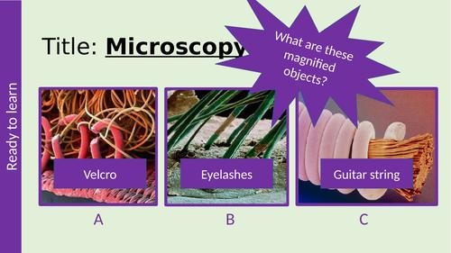 Microscopy GCSE AQA Biology light & electron microscopes