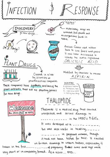 Development & Testing Drugs - GCSE Biology AQA