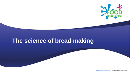 The science of bread making presentation