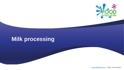Milk processing presentation
