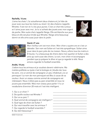 Mes Animaux de Compagnie Lecture: Pets French Reading